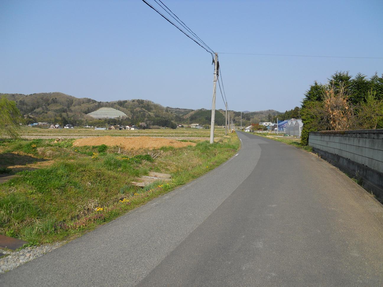 画像 965-1.JPG